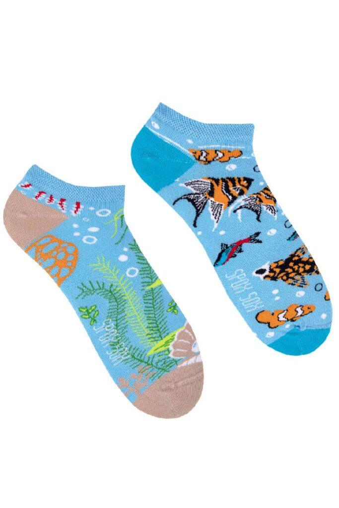 Sea life low socks